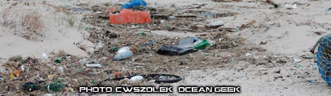 Pollution plastique d'une plage de la Mer du Nord. Photo : C.Wszolek - Ocean Geek